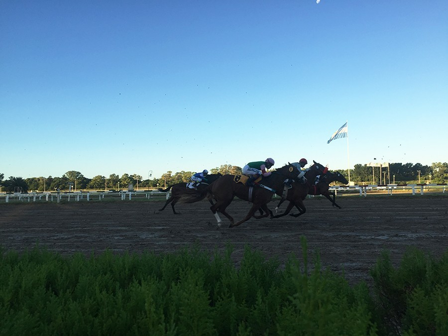 horse-race-argentina